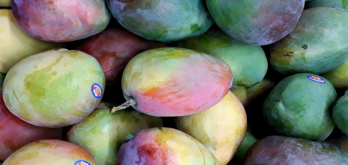 Mango season is here